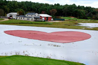 View photos of the heart-shaped cranberry corral.